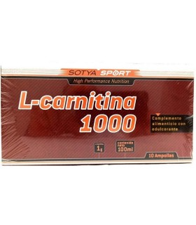 L-CARNITINA 1000 MG 10 VIALES