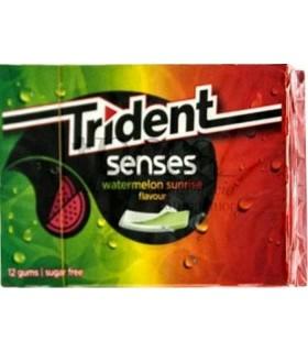 TRIDENT SENSES MELON/SANDIA